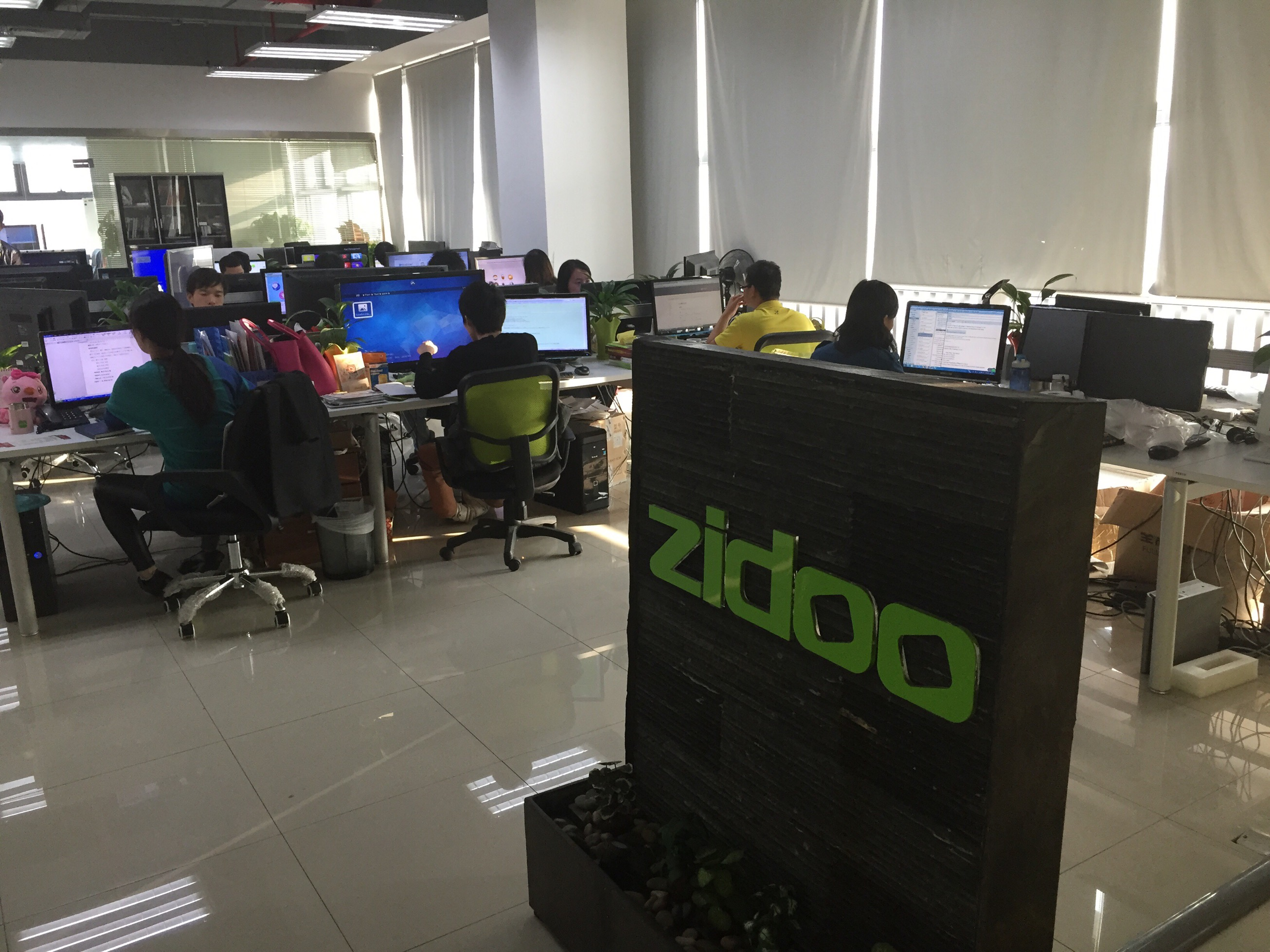 The ZIDOO development team